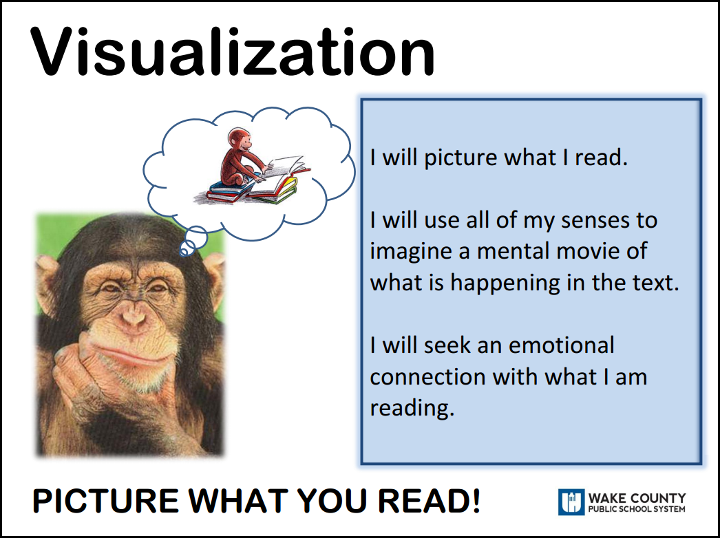 Reading to learn visualizing